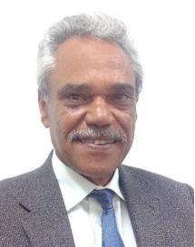 الأستاذ الدكتور سالم حامدي